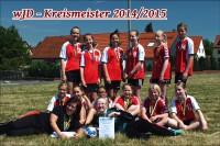 Erfolgreicher Tauchaer Handball-Nachwuchs – Saison 2014/2015